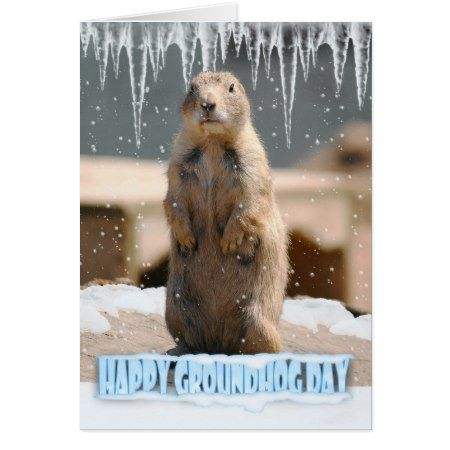 Groundhog Day Card, Happy Groundhog Day Card - tap to personalize and get yours