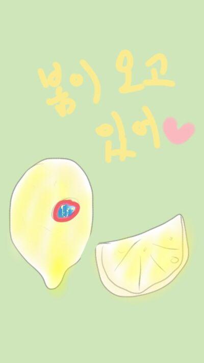 봄날 레몬티 한잔