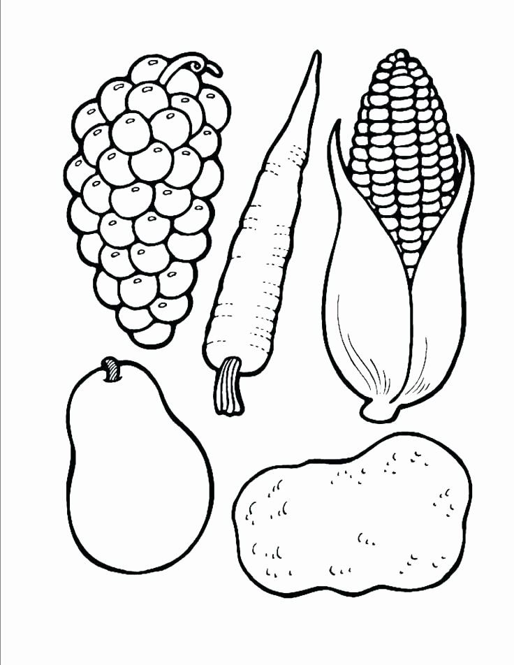Vegetable Coloring Pages Printable Elegant Fruits And Ve Ables Coloring Pages For Kids Printab Fruit Coloring Pages Cornucopia Craft Preschool Cornucopia Craft