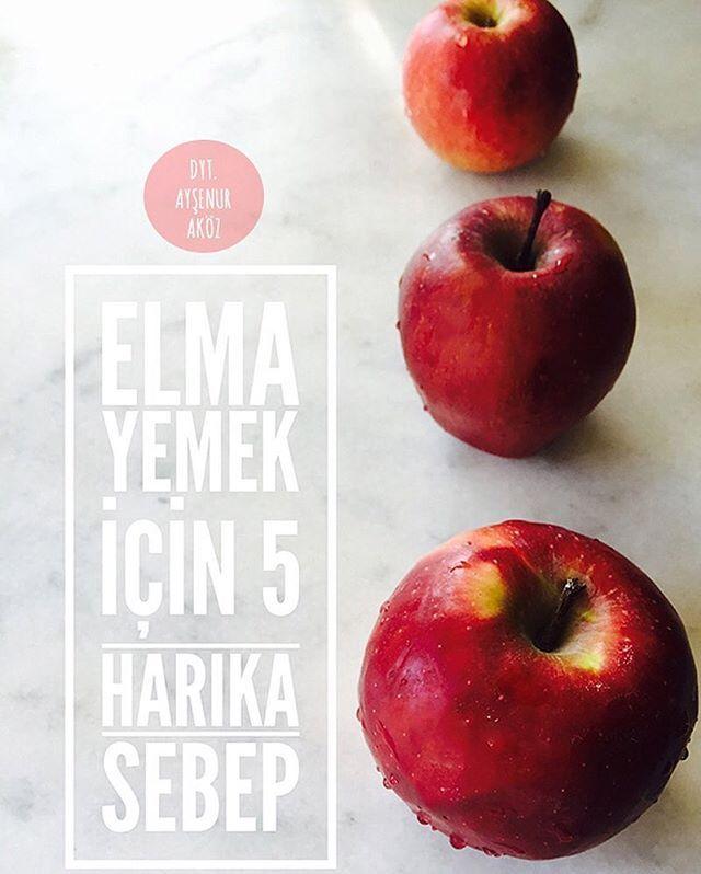 .  1.Hollanda'da menapoz sonrası 34 bin kadın üzerinde yapılan çalışmada; flavonoidden zengin olan elma tüketen kadınların, koroner kalp hastalıklarına yakalanma riski arasında ters orantı bulunmuştur. Elmada bulunan pektin ve doğal lifler kalp hastalıklarına karşı önemli bir etkendir. .  2.Klinik çalışmalar düzenli elma tüketen bireylerin akciğer ve meme kanserine yakalanma oranının tüketmeyenlere göre daha düşük olduğunu göstermiştir. .  3.Fransa'da yapılan araştırmaya göre düzenli e...