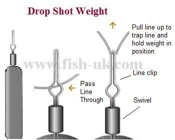 Drop Shot Fishing. Learn how to catch perch drop shotting http://www.fish-uk.com/tackle-drop-shot-fishing-for-perch.htm