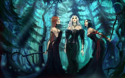 Witches in the forest wallpaper