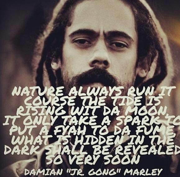 Bob Marley History Quote: Damian Marley.