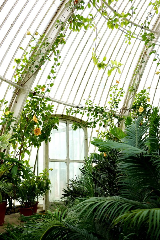1000 ideas about greenhouses on pinterest aquaponics for Andy tauer reverie au jardin