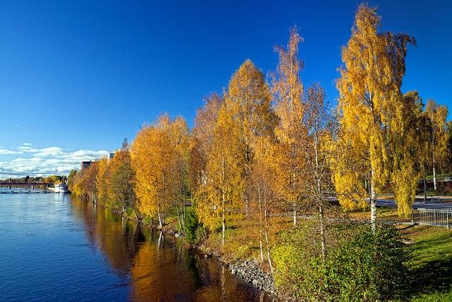 Umeå by marcus.j, via Flickr