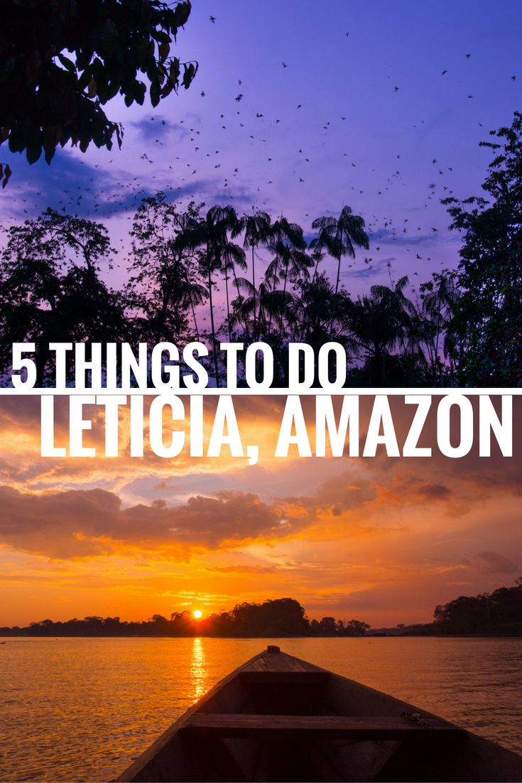 Spot dolphins, eat casabes, witness parrots losing it at sunset – check out favorite activities in Leticia for inspiration!