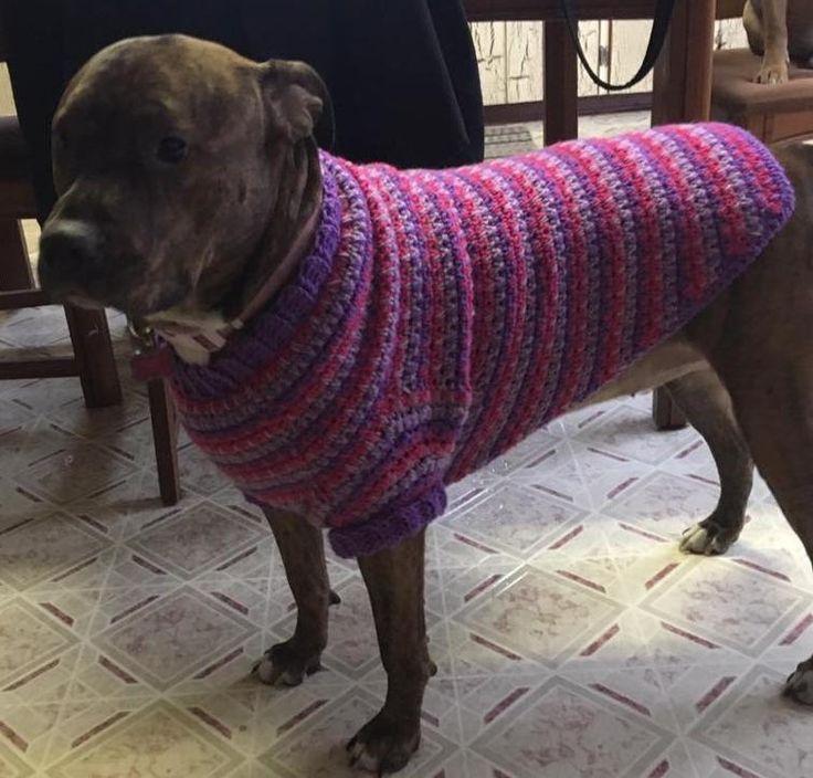Crochet Large Dog Coat Crochet For Pets Large Dog