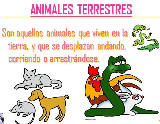 animales terrestres - photo #43