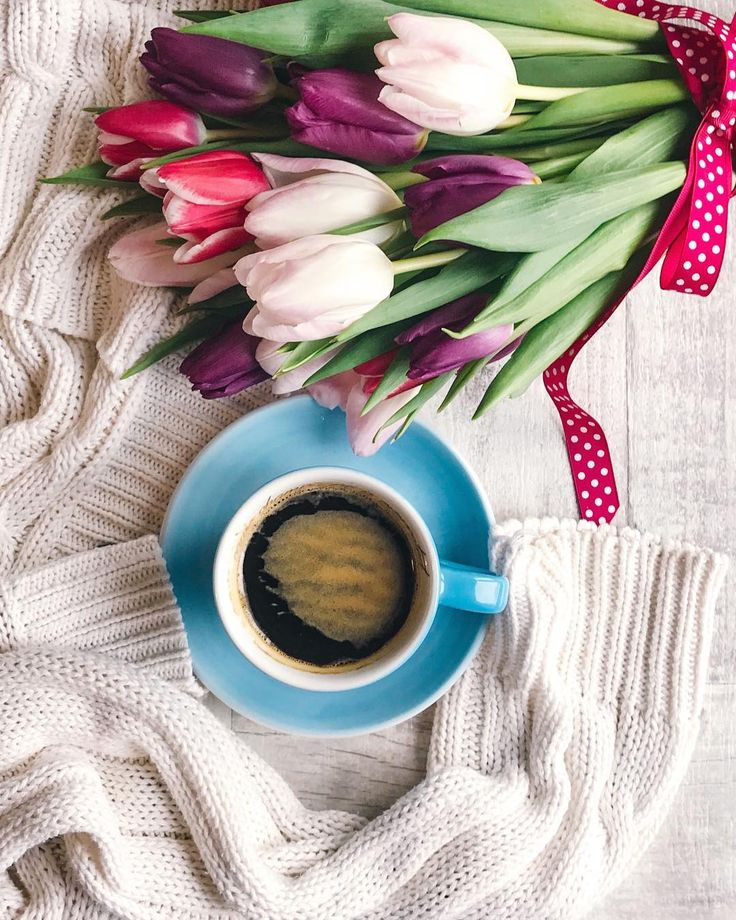 Morning ladies,coffee warm sweater and tulips ..perfect