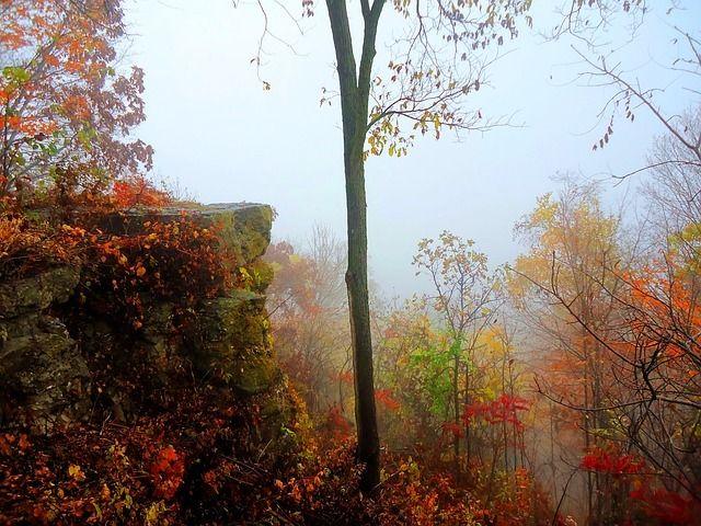 Autumn In Halton! | Hearth & Home Realty Inc. Brokerage