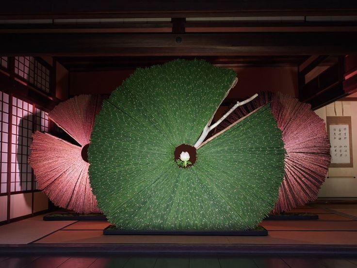 Daniel Ost Flower Design