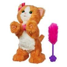 interactive cat