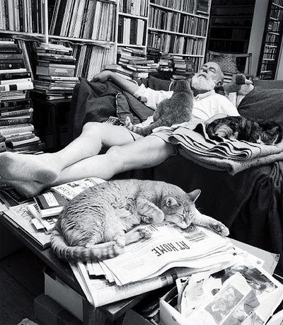 Edward Gorey. En su casa llena de libros y con sus inseparables gatos.