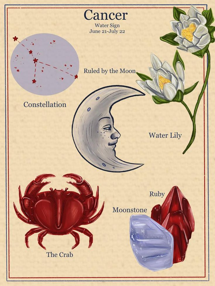 Chinese Astrology, Zodiac Signs Astrology, Zodiac Art, The Good Witch, Cancerian, Moon Child, Vintage Fashion, Vintage Style, Beautiful Artwork