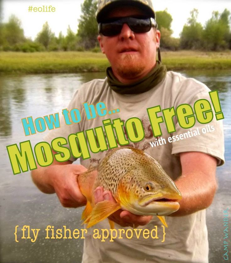 Easy Mosquito Repellent!  Camper  Fly Fisher Approved