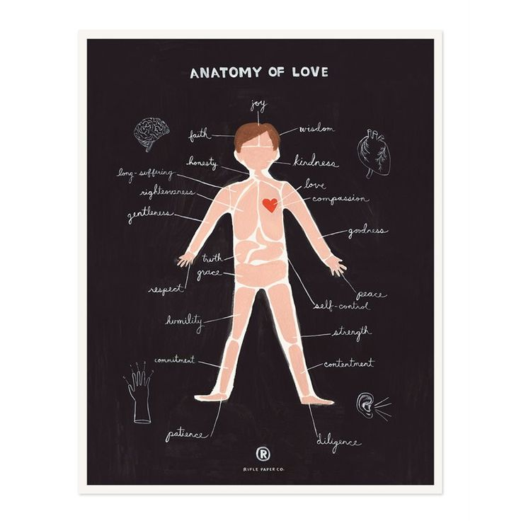Anatomy of Love 11x14 by Rifle Paper Co. | Prints/Wall Art Gifts | chapters.indigo.ca