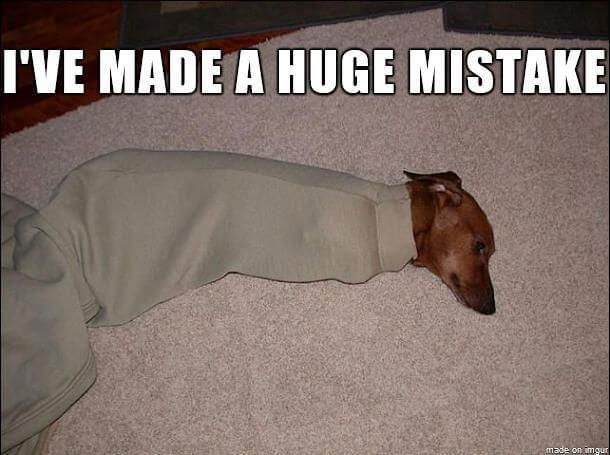 Pix For > Angry Dachshund Meme