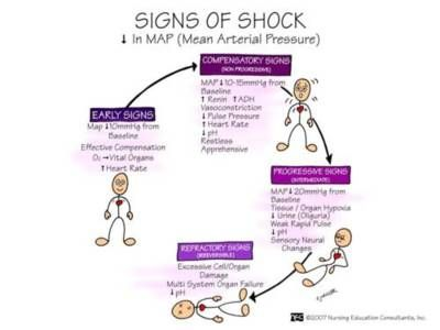 Signs Of Shock...for all the times I hear a caller tell me...they are going into shock!