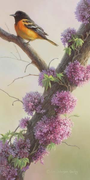 Wildlife Art by Joni Johnson-Godsy official website featuring original oil paintings of wildlife, nature, animals, online gallery, blog, news, art prints.