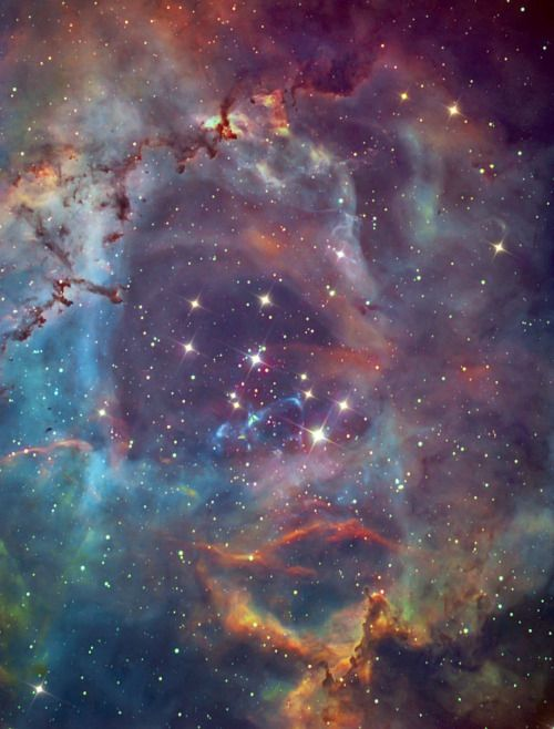 The Center of a Rose - Stellar Winds in NGC 2237This image detects the center of a Nebula commonly known as the Rose Nebula. Credit: Planetario/NASA/NOAO/Chandra