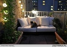 Zobacz zdjęcie Ziołowy ogród na wąskim balkonie