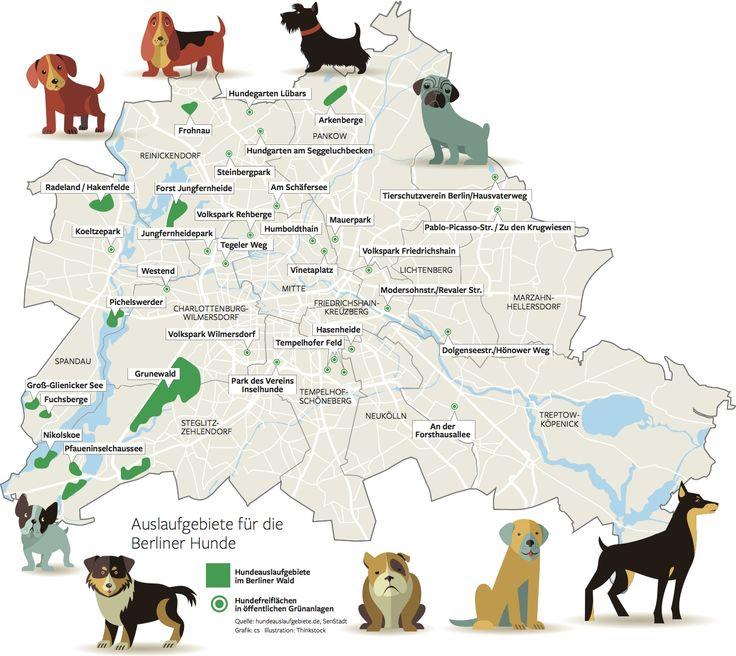 Wo Dürfen Hunde Urinieren