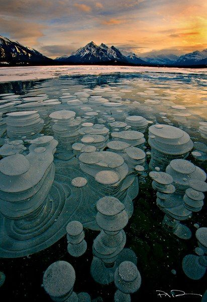 Bubbles trapped and frozen under a thick layer of ice creating a glass type feel to the frozen lake