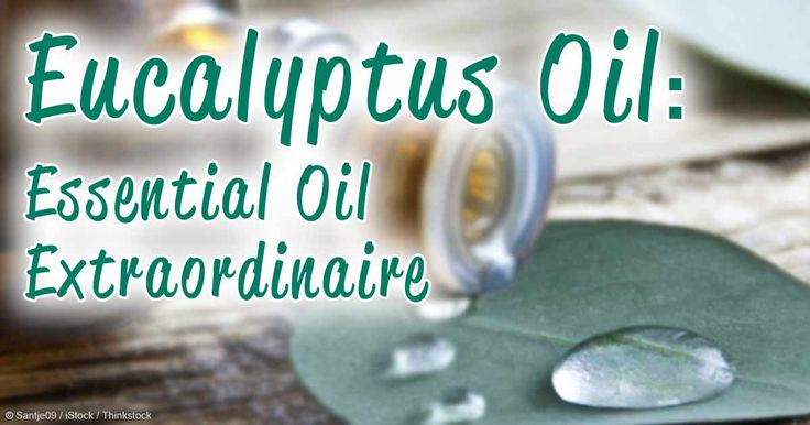 Learn more about the uses and benefits of eucalyptus oil, which comes from a fast-growing evergreen tree native to Australia. http://articles.mercola.com/herbal-oils/eucalyptus-oil.aspx