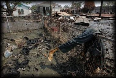 17 Best images about Hurricane Katrina 8/29/05 on ...