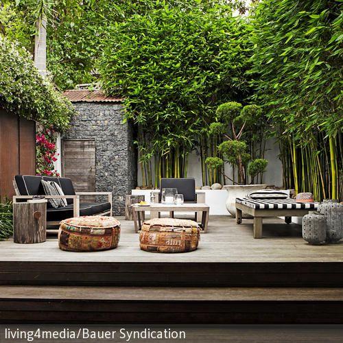 Best 25+ Bambus pflanzen ideas on Pinterest | Bambusgarten ...