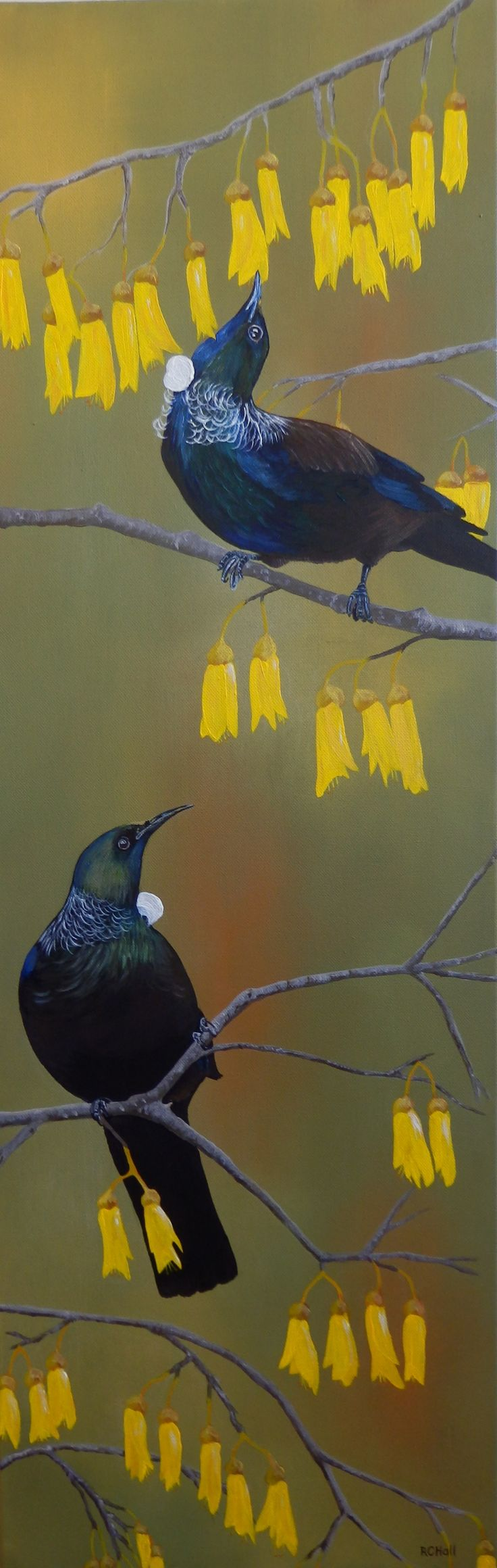 Tuis in Kowhai Tree - Acrylic painting by New Zealand Artist Robyn Hall SOLD