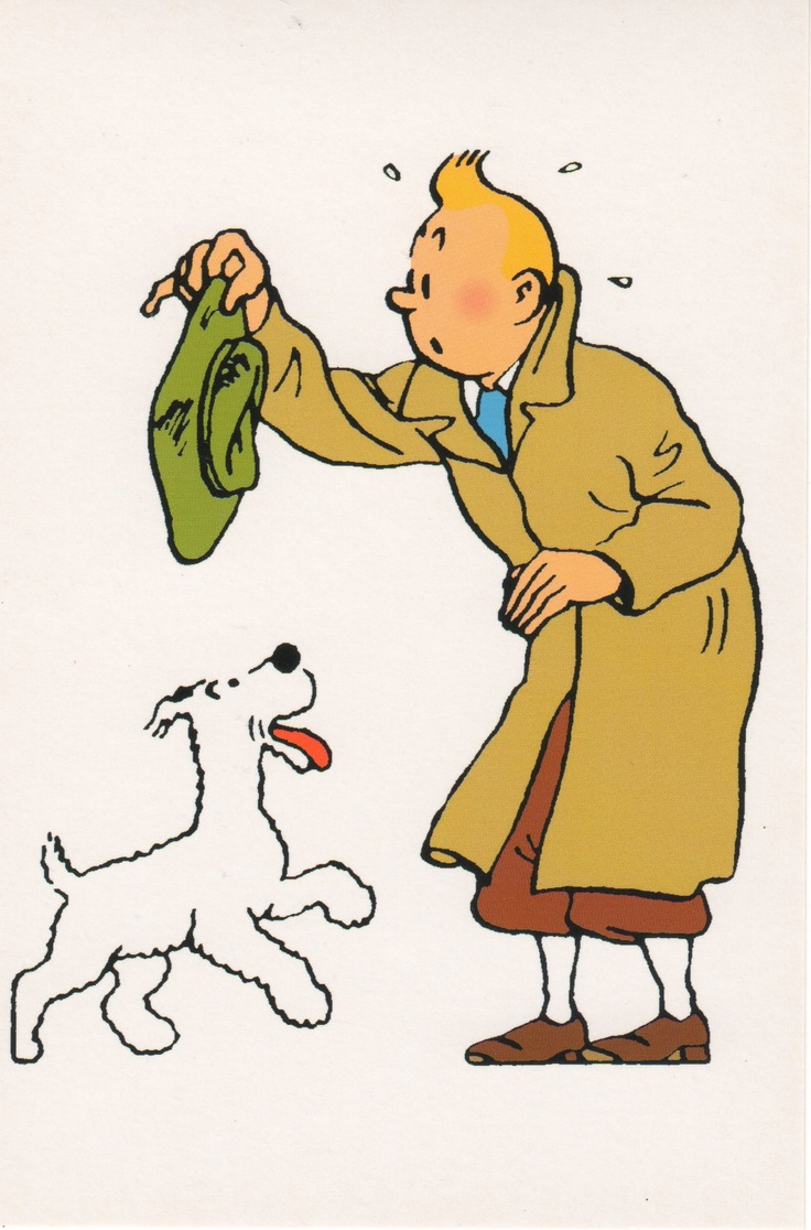 447 best tintin images on pinterest tintin comic books - Image de tintin et milou ...