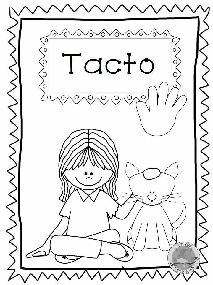 84 best proyecto el cuerpo images on pinterest human body NYS DMV Eye Chart childhood education irene montessori homeschooling valentino kindergarten preschool molde visual aids