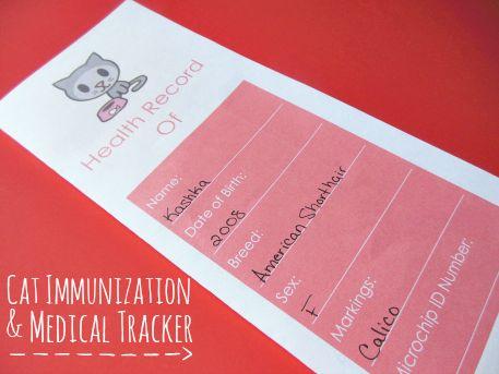 cat tracker iphone app