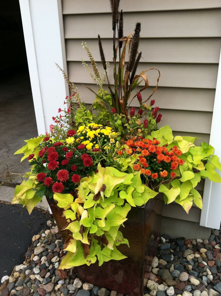 fall planters mix fall plants into your summer planters pull out dead plants to make room for. Black Bedroom Furniture Sets. Home Design Ideas