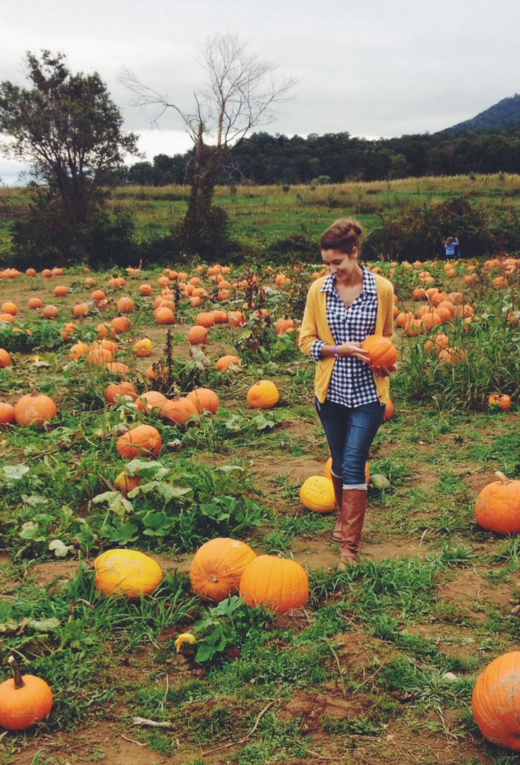 pumpkin patch photo ideas - Fall outfit • photography • jcrew • H&M • gingham • tall