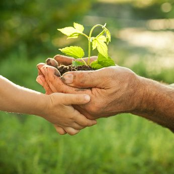 Make a difference. Share your green information and we'll blog about it. Our beautiful planet is just as much a part of us as we are of her, and every tiny step that we can take on a personal level to look after our planet makes a BIG difference collectively.