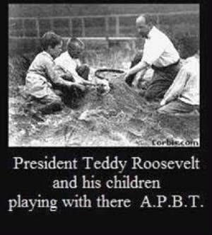 the social impact of theodore roosevelt during his presidency When theodore roosevelt took the oath of office as the 26th president of the  united  during his presidency, roosevelt made conservation a major part of his   of american values and ideals would have an ennobling effect on the world.