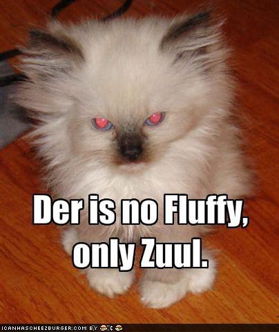 Der is no Fluffy, only Zuul.