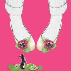 Stasia Sisi Ballerina Shoes- Artwork