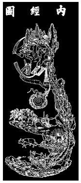 Pornostar daisy lee qigong