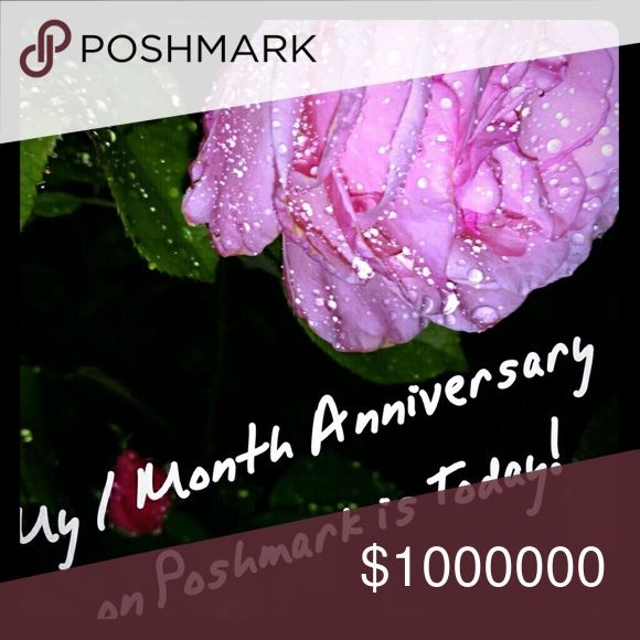 One Year Business Anniversary Quotes: 1000+ Ideas About Happy One Month Anniversary On Pinterest