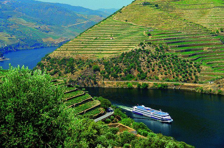 Douro Valley - Porto, Portugal