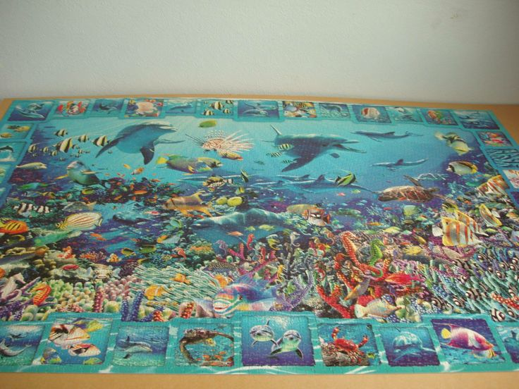 This puzzle is a fantastic 5000 piece underwater scene by Peter Lambert.