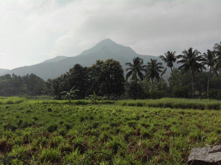 Arunachala mountain, Thiruvanamallai