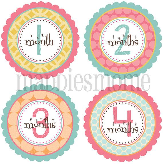 Hey, I found this really awesome Etsy listing at http://www.etsy.com/listing/110830011/monthly-baby-stickers-baby-girl-month