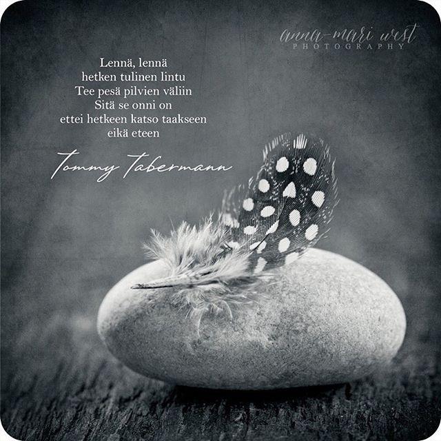 Sitä se onni on ❤️ #annamariwest #tommytabermann