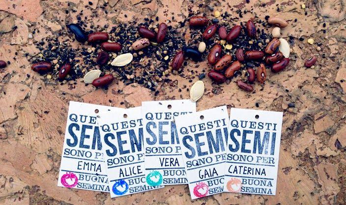 Orto tascabile  L'eco dell'ecologia http://ecodelleco.blogspot.it/2014/12/orto-tascabile.html