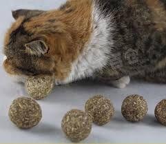 Catnip ball $5.00