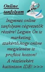 Digitális egyetemet hozna létre a TESCO.  http://blog.marketinggps.hu/cikkek/digitalis-egyetemet-hozna-letre-a-tesco/60